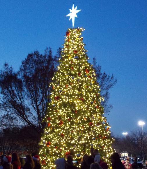 TOC Christmas Tree